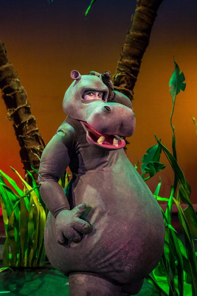 Hippo on the Moon